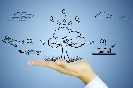 ox�geno: mano con el �rbol de disminuci�n del calentamiento global, la fotos�ntesis, el di�xido de carbono, ox�geno