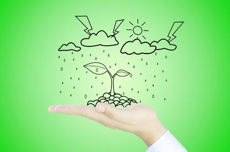 hand met boom daling opwarming van de aarde, fotosynthese, kooldioxide, zuurstof Stockfoto