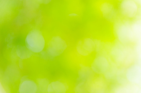 light green: green bokeh background from nature under tree shade Stock Photo