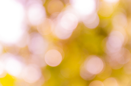 to shade: Bokeh background from nature under tree shade Stock Photo