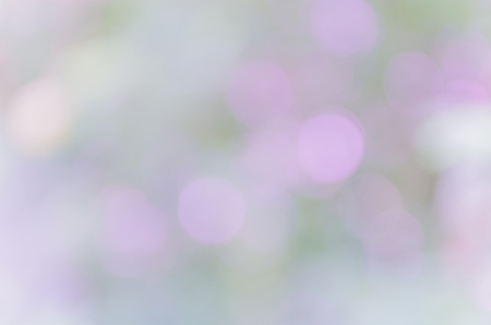 under the tree: Bokeh background from nature under tree shade Stock Photo