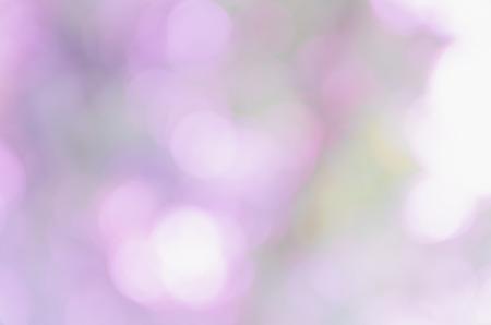 celebrat: violet bokeh background from nature