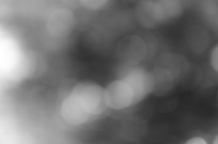 ambiance: Gray bokeh out of focus background from nature forest
