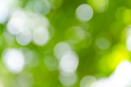 Green bokeh out of focus background from nature forest Stock Photo
