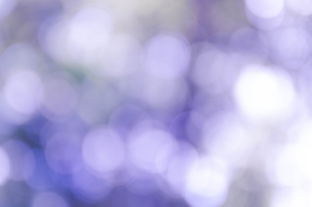 Blue bokeh out of focus background from nature forest Stockfoto