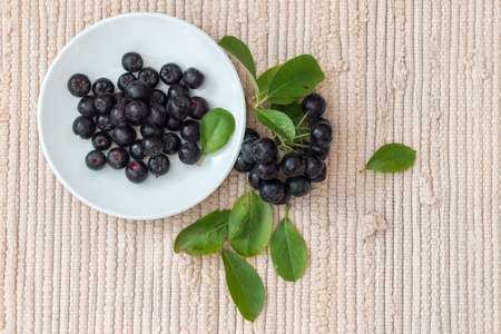 Close up of Aronia melanocarpa berries (black chokeberry) with leaves in white dish on textile background Stock fotó