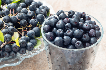 Closeup of fresh ripe black chokeberry (Aronia melanocarpa) with leaves in glass pot on brown ceramic background