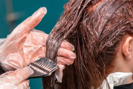 Professional hairdresser applying dye on client hair.