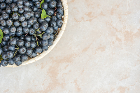 Fresh chokeberry background (Aronia melanocarpa) on ceramic with copy space for yours text. 版權商用圖片