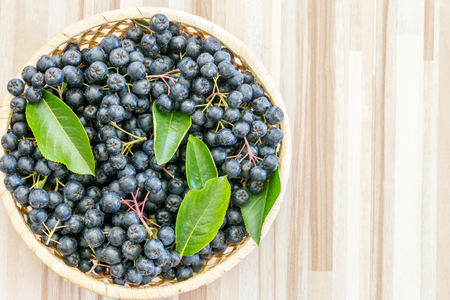 Fresh chokeberry (Aronia melanocarpa) in pot on wooden background Standard-Bild