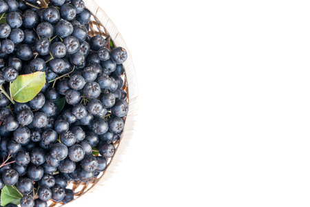 Fresh chokeberry or Aronia melanocarpa in basket, isolated on white background. Top view. Design element. Standard-Bild