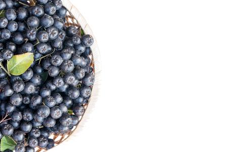 Fresh chokeberry or Aronia melanocarpa in basket, isolated on white background. Top view. Design element. 版權商用圖片