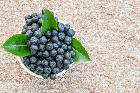 Chokeberry or Aronia melanocarpa in pot on textile background. Healthy fruit
