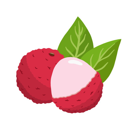 Lychee vector illustration. cute litchi Banque d'images - 125665742