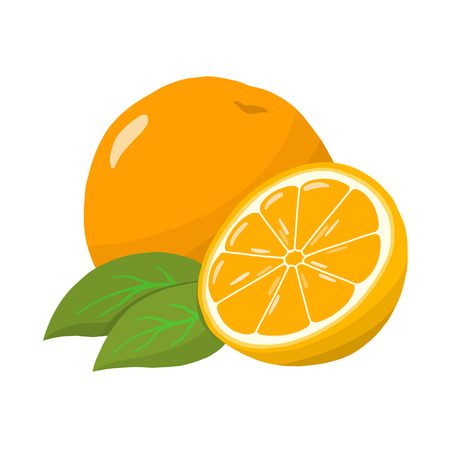 Orange vector illustration. Cute orange fruit 向量圖像