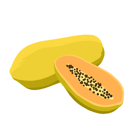Papaya vector illustration. Cute papaya 向量圖像