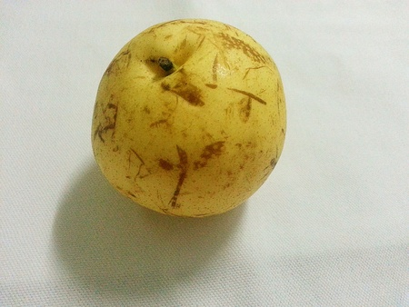 asian pear: Chinese pear or asian pear fruit.