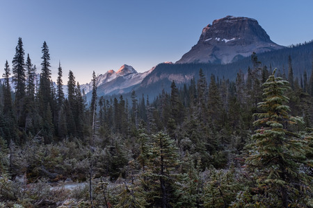 A stunning early morning view of majestic Cathedral Mountain near the Takakkaw Falls in Yoho National Park, against a bright blue sky, nobody in the image
