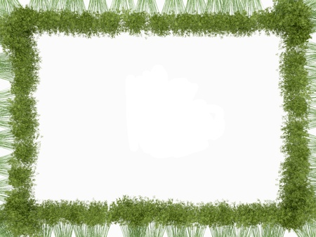 Bamboo frame isolated over white. Usedul as natural pattern