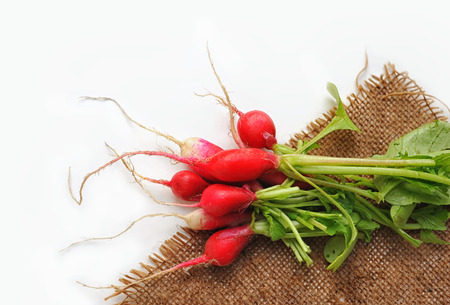 haulm: Fresh radish with haulm on sackcloth. Not isolated