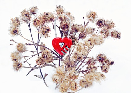 unrequited love: Love through the thorns. Unrequited love concept or love through difficulties