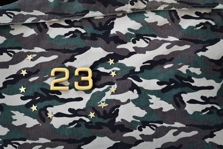defender: 23 February. Happy Defender of the Fatherland Day.  23 figures and stars on camouflage background Stock Photo