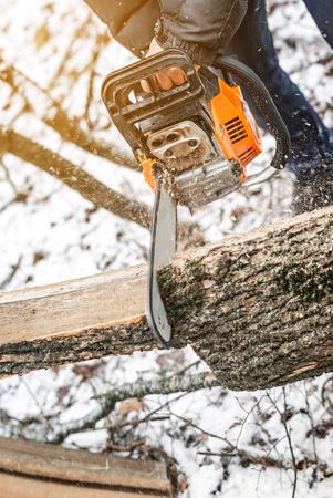 Tronçonneuse manuelle. Homme, mains, scie, arbre, bois, hiver, coucher soleil