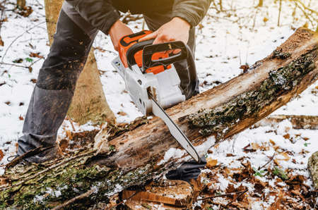 Man hands holding an electric chainsaw, saws a tree in the forest. Deforestation. Modern technologies. Ecological problems. Earth Resources. 版權商用圖片 - 150756657