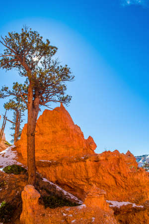 Red-yellow rocks in Bryce Canyon. Panorama of the mountain massif. A tourist place, a stone forest. Reklamní fotografie