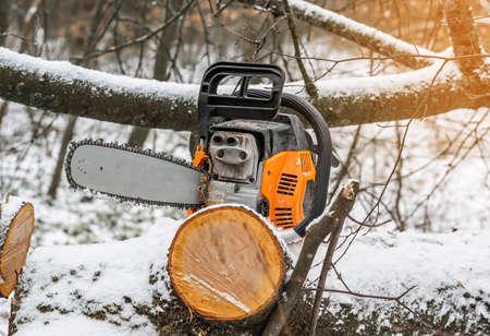 Orange manual chainsaw on a cut tree