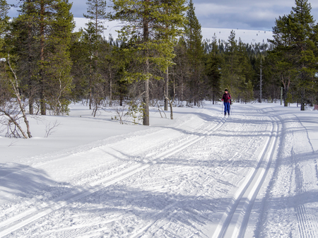 Female cross-country skier in the Finland forest