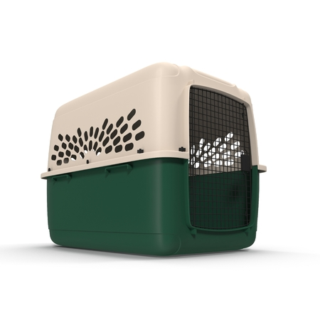 cat carrier: 3d model of pet carrier isolated on a white background