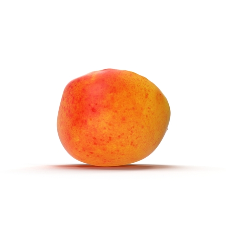 Ripe apricots cross section on white background 3D Illustration