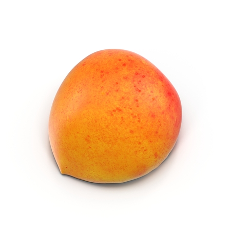 apricot kernel: Ripe apricots cross section on white background 3D Illustration
