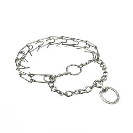 pinch: Dog Pinch Collar isolated on a white background. 3D illustration