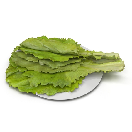 lettuces: Lettuces leaves on plate isolated on white. 3D illustration Stock Photo