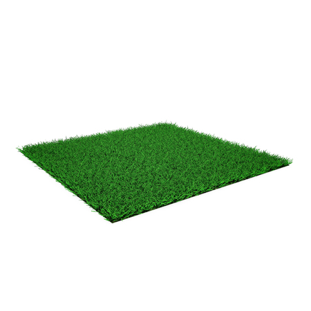 Square of green grass field on white background.