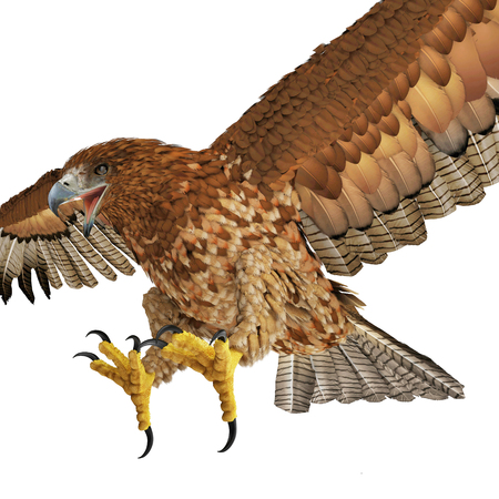 Gurney Eagle on white background. 3D illustration Stock Illustration - 78406774