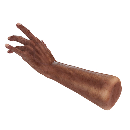 african hand of the old man isolated on a white. 3D illustration