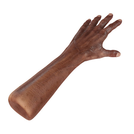mature adult: Senior hands on a white. 3D illustration
