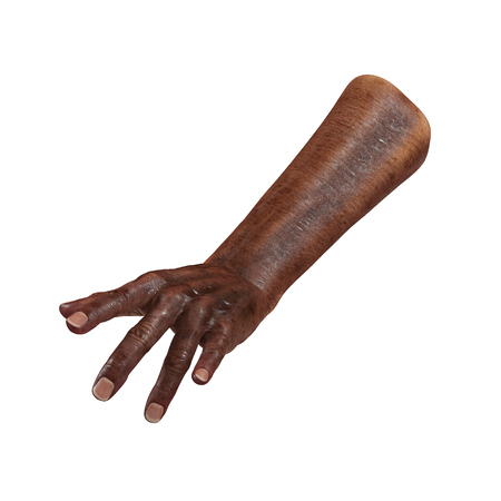 Senior hands on a white. 3D illustration