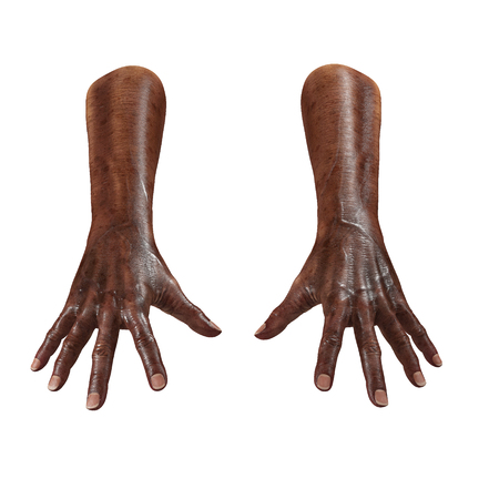 Wrinkled on old african man hand on white. 3D illustration