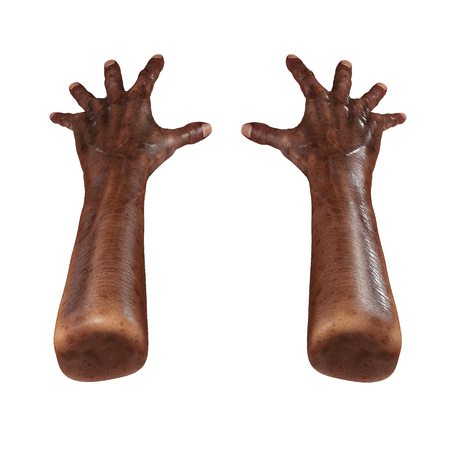 Wrinkled on old african man hand on white. 3D illustration