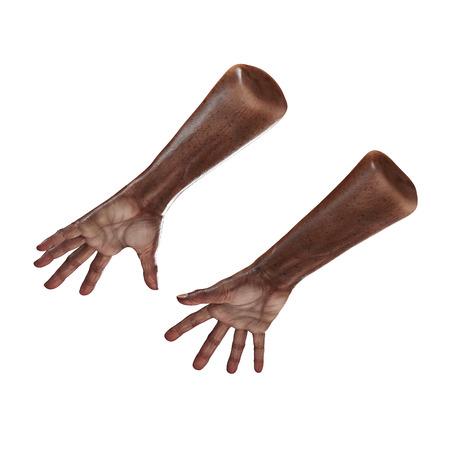 Wrinkled on old african man hand on white background. 3D illustration