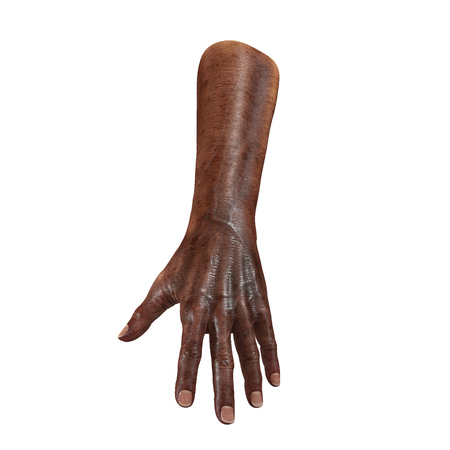 Old african hand on a white. 3D illustration Stock Photo