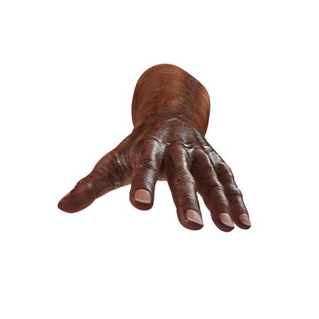 Senior hands on a white. 3D illustration
