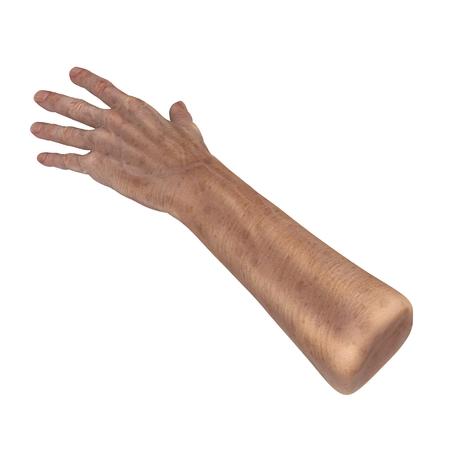 Senior hand on a white. 3D illustration Stock Photo