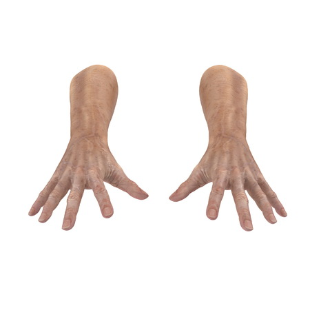 mature adult: hands of the old man isolated on a white. 3D illustration