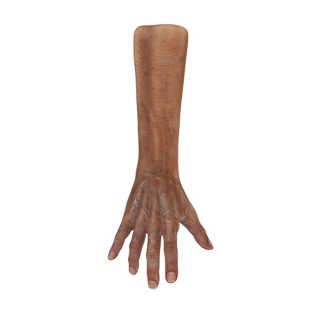 Wrinkled on old man hand skin on white. 3D illustration Stock Photo