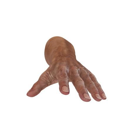 Senior hands on a white background. 3D illustration